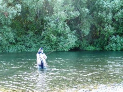 Fly Fishing on the clear emerald green water in the Waikaia River to the SE of Lumsden