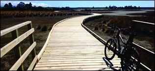 Tasman Taste Trail & Winery tours