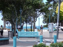 Auckland holiday Apartment/Condo by the Sea - From $135 - $185 per night